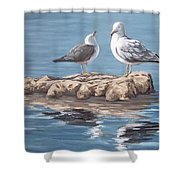 Seagulls In The Sea Shower Curtain