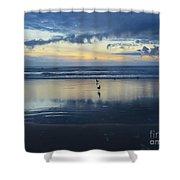 Seagulls On Beach At Sunset Shower Curtain
