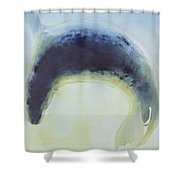 Seal Circle Shower Curtain