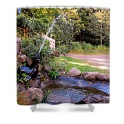Seal Statue Fountain 1 Shower Curtain