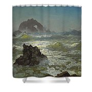 Seal_rock,_california Shower Curtain
