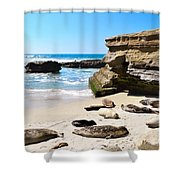 Seals Siesta On La Jolla Beach Shower Curtain