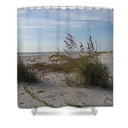 Seaoats On The Beach Shower Curtain