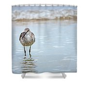 Searching Shower Curtain by Todd Blanchard
