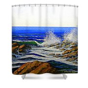 Seascape Study 4 Shower Curtain