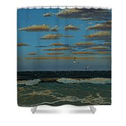 Seascape With Tearns Shower Curtain