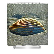 Seashell After The Wave Square Shower Curtain