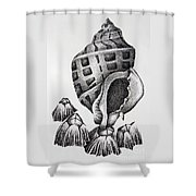 Seashell And Barnacles Shower Curtain
