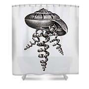 Seashell Forms Shower Curtain