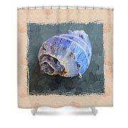 Seashell IIi Grunge With Border Shower Curtain