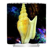 Seashell Strombus Listeri Shower Curtain