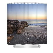 Seashells At The Seashore Shower Curtain