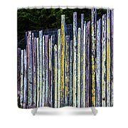 Seashore Fence Shower Curtain