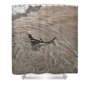 Seashore Reflections Shower Curtain
