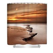 Seashore Wonders Shower Curtain