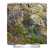 Seaside Cliff Garden In Point Lobos State Reserve Near Monterey-california  Shower Curtain