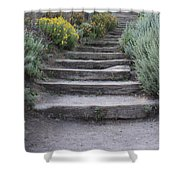 Seaside Steps Shower Curtain