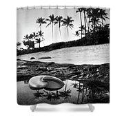 Seaside Treasure Shower Curtain