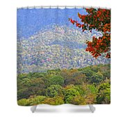 Seasonal Color Shower Curtain