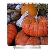 Seasonal Giants Shower Curtain