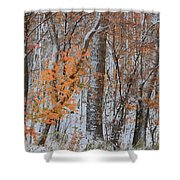 Seasons Overlapping Shower Curtain