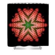 Seastar Lightmandala 2 Shower Curtain