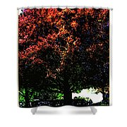 Seattle Chateau Ste Michelle Tree Shower Curtain