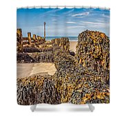 Seaweed Covered Shower Curtain