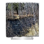 Secluded Brook Shower Curtain