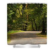 Secluded Forest Road Shower Curtain