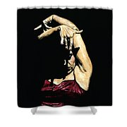 Seclusion Del Flamenco Shower Curtain by Richard Young