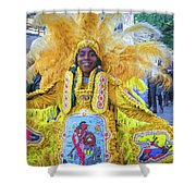 Second Line Nola _ Painted Shower Curtain