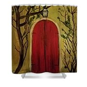 Secret Door Shower Curtain