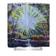 Secret In The Forest Shower Curtain