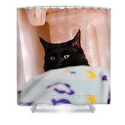 Secret Mission For Catnip Shower Curtain