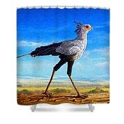 Secretary Bird Shower Curtain