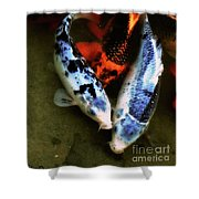 Secrets Of The Wild Koi 10 Shower Curtain