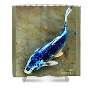 Secrets Of The Wild Koi 18 Shower Curtain
