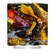 Secrets Of The Wild Koi 2 Shower Curtain