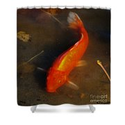 Secrets Of The Wild Koi 5 Shower Curtain