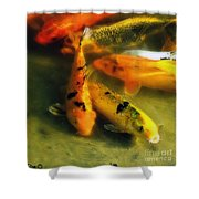 Secrets Of The Wild Koi 9 Shower Curtain