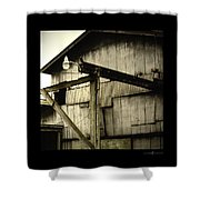 Security Light Shower Curtain