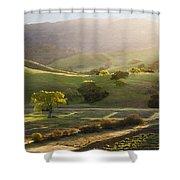 Sedgwick Sunrise Shower Curtain