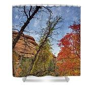 Sedona Fall Colors Shower Curtain