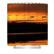 See Light Shower Curtain