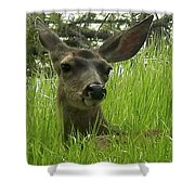 See Me Now Shower Curtain