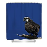 See No Evil Shower Curtain