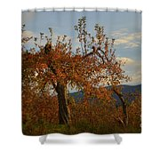 See The Beautiful In Every Day Shower Curtain