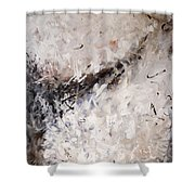 See The World Turn Abstract Painting Shower Curtain