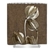 Seed Pods Macro Shower Curtain